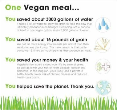 vegan-water-usage-meat-chart